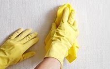 Quitando manchas de moho y humedad