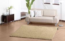 Limpieza de alfombra con HOMEPPY