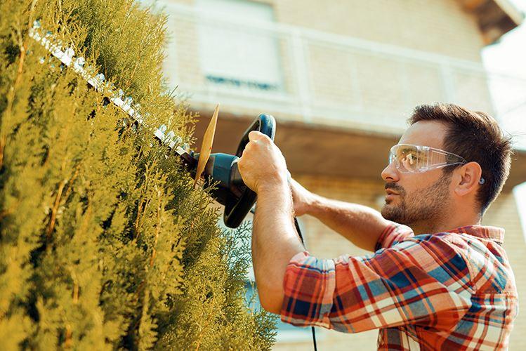 Cuidar el jardín, contrata servicio de jardinería Assista Home