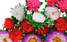 Laca para conservar tus flores frescas