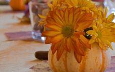 Crea tu propio centro floral con calabaza