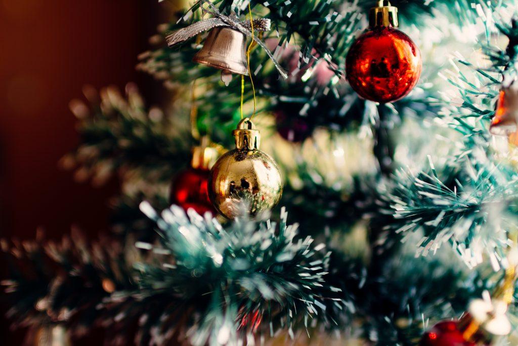 Cuidar el árbol de navidad