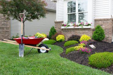 combatir plagas en el jardín