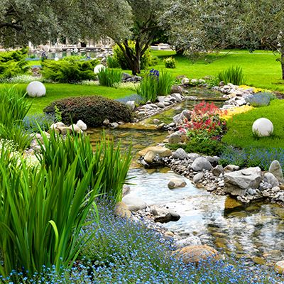 Estanque jardin