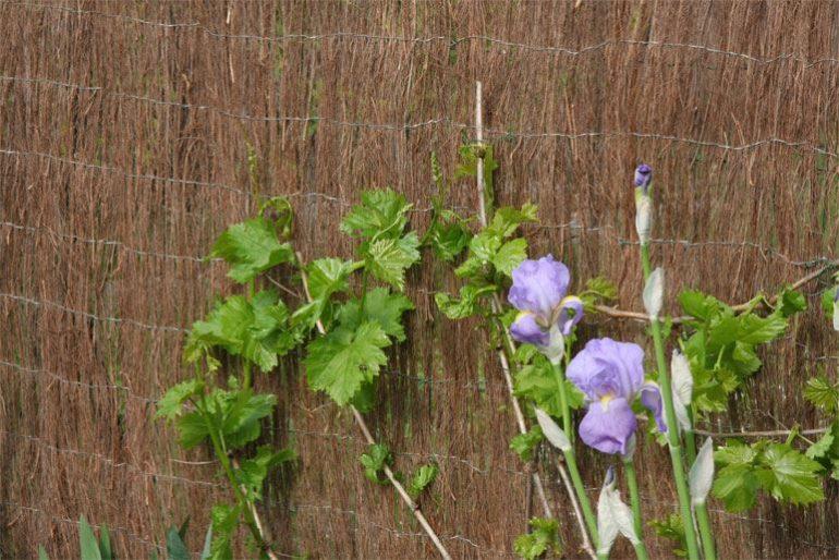 vallas de jardin