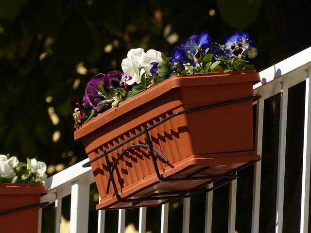 Usar revestimientos para decorar con plantas